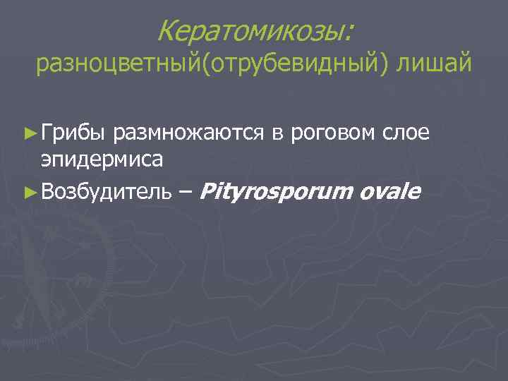 Кератомикозы:  разноцветный(отрубевидный) лишай ► Грибы размножаются в роговом слое  эпидермиса