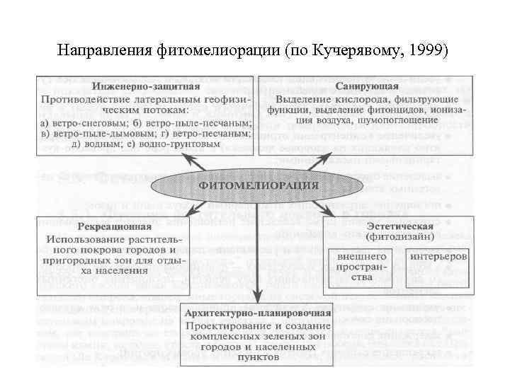Направления фитомелиорации (по Кучерявому, 1999)