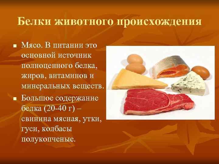 Белки животного происхождения n  Мясо. В питании это основной источник полноценного белка, жиров,