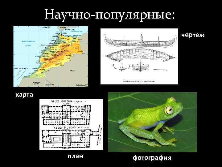 Научно-популярные:      чертеж карта    план