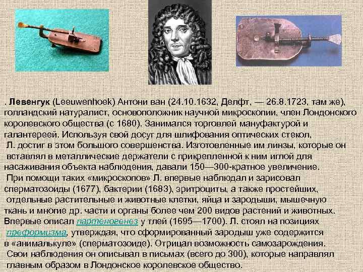 . Левенгук (Leeuwenhoek) Антони ван (24. 10. 1632, Делфт, — 26. 8. 1723, там