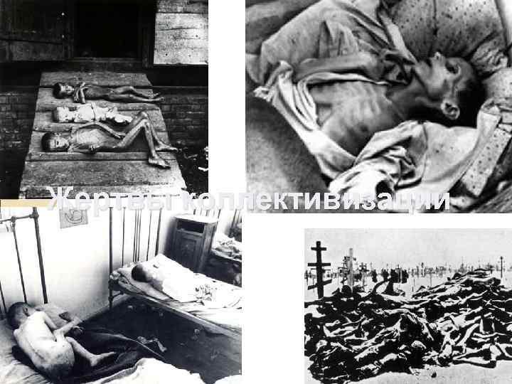 Жертвы коллективизации