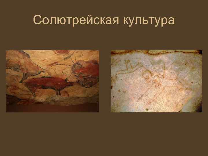 Картинки по запросу Солютрейская_культура