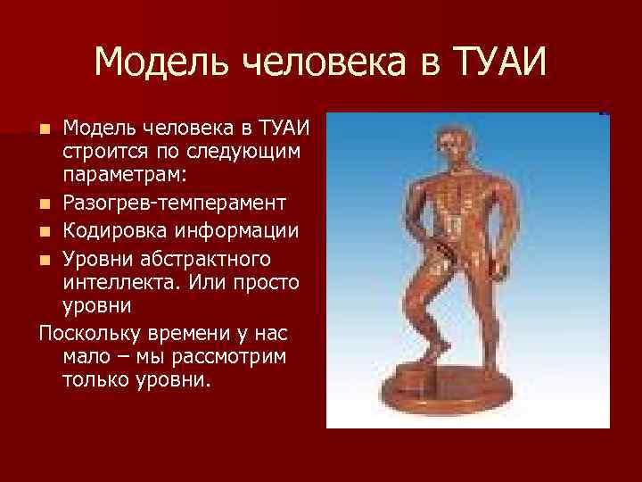 Модель человека в ТУАИ строится по следующим параметрам: n Разогрев-темперамент n Кодировка информации n