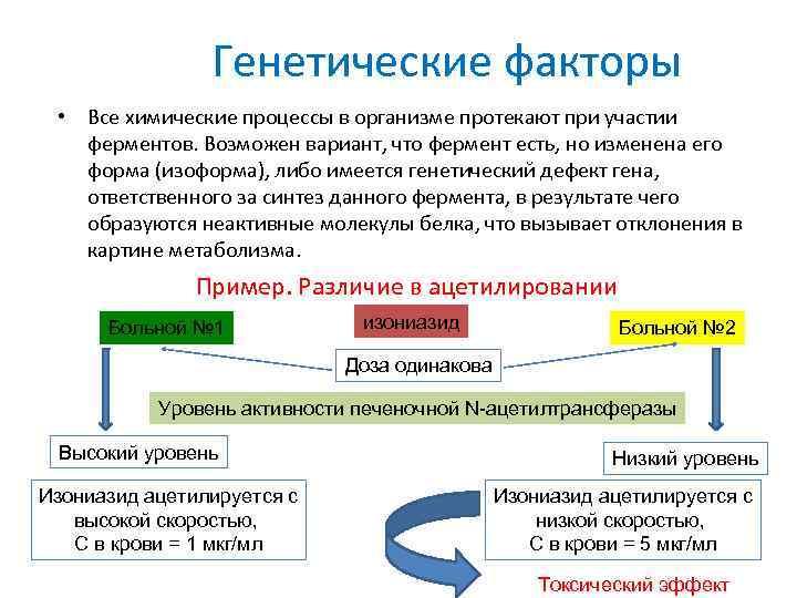 Генетические факторы • Все химические процессы в организме протекают при участии ферментов. Возможен вариант,