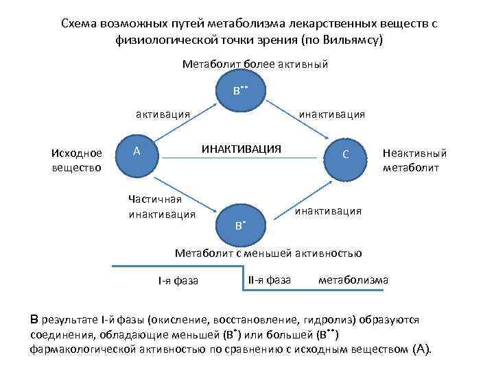 Схема возможных путей метаболизма лекарственных веществ с физиологической точки зрения (по Вильямсу) Метаболит более