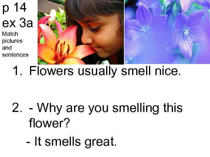 p 14 ex 3 a Match pictures and sentences 1. Flowers usually smell nice.