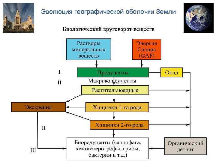 Гдз по географии ;нарисуйте биологический круговорот