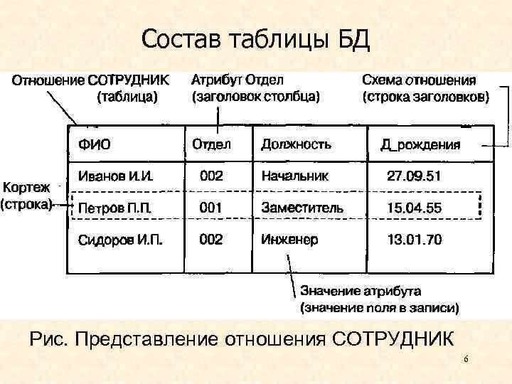 Состав таблицы БД Рис. Представление отношения СОТРУДНИК 6