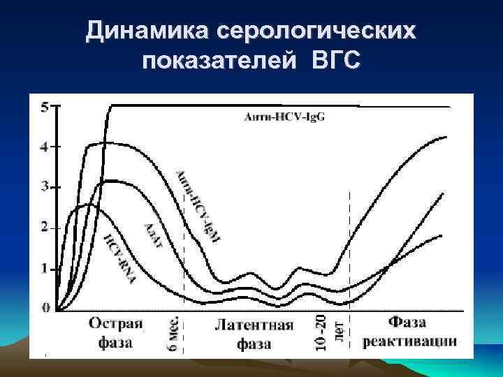 Динамика серологических показателей ВГС