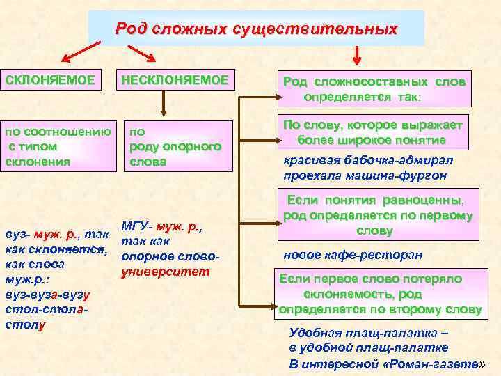 Род сложных существительных СКЛОНЯЕМОЕ по соотношению с типом склонения вуз- муж. р. , так