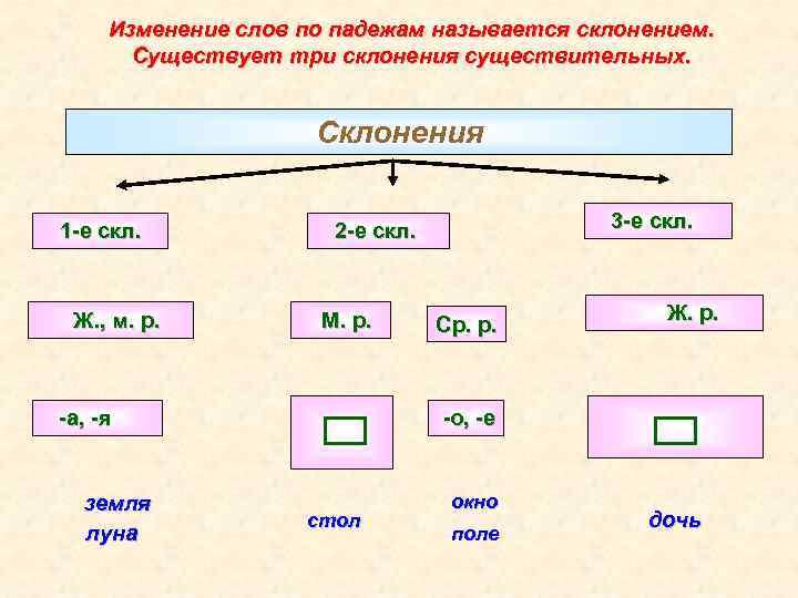 Изменение слов по падежам называется склонением. Существует три склонения существительных. Склонения 1 -е скл.