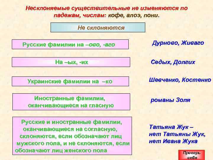 Несклоняемые существительные не изменяются по падежам, числам: кофе, алоэ, пони. Не склоняются Русские фамилии
