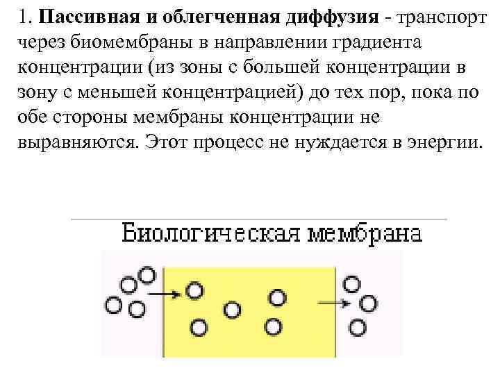 1. Пассивная и облегченная диффузия - транспорт через биомембраны в направлении градиента концентрации (из