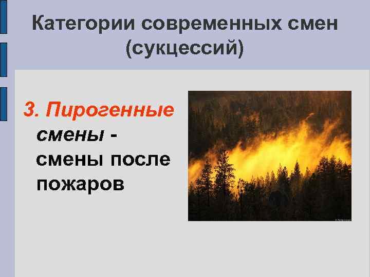 Категории современных смен (сукцессий) 3. Пирогенные смены после пожаров