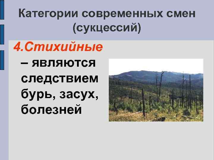 Категории современных смен (сукцессий) 4. Стихийные – являются следствием бурь, засух, болезней