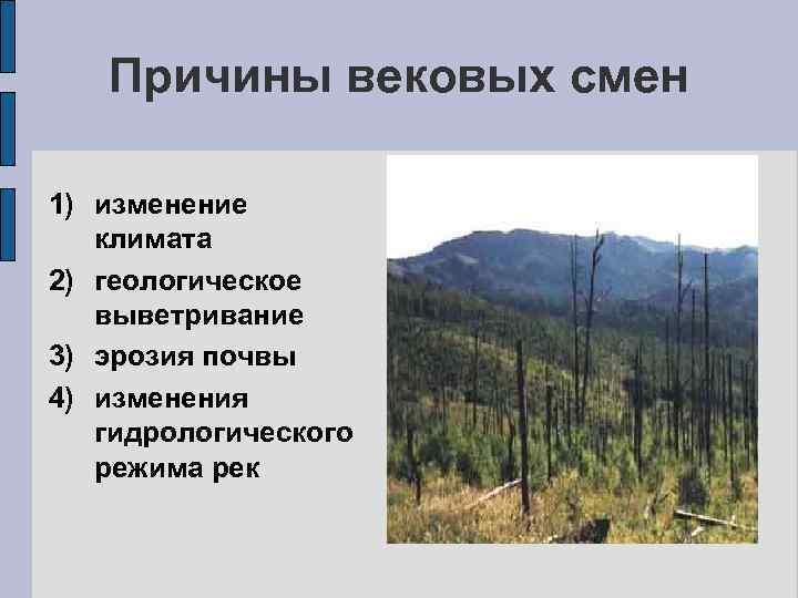 Причины вековых смен 1) изменение климата 2) геологическое выветривание 3) эрозия почвы 4) изменения