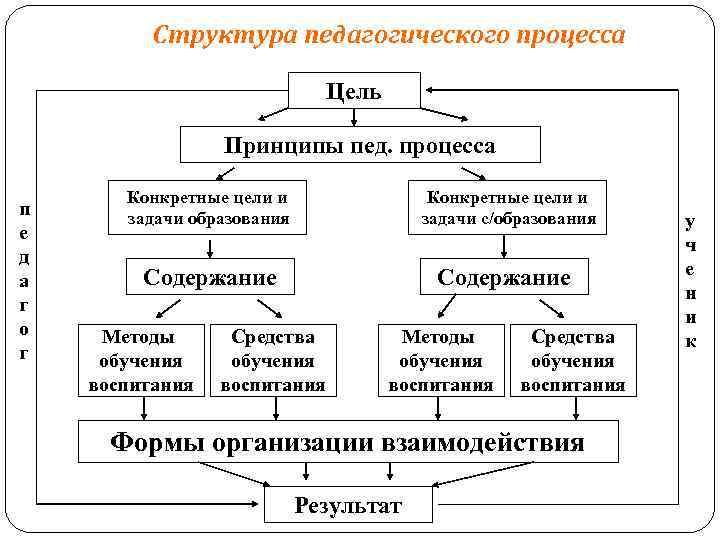 Структура воспитательного процесса картинка