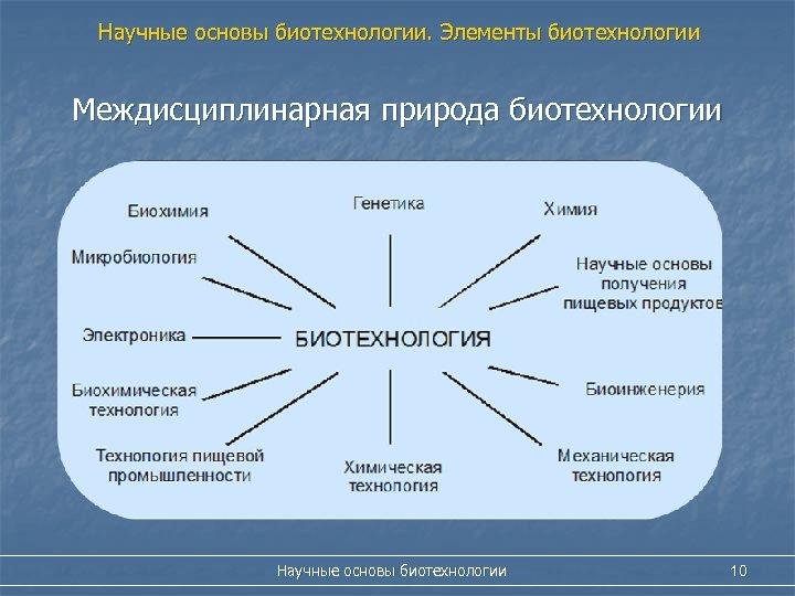 Научные основы биотехнологии. Элементы биотехнологии Междисциплинарная природа биотехнологии Научные основы биотехнологии 10