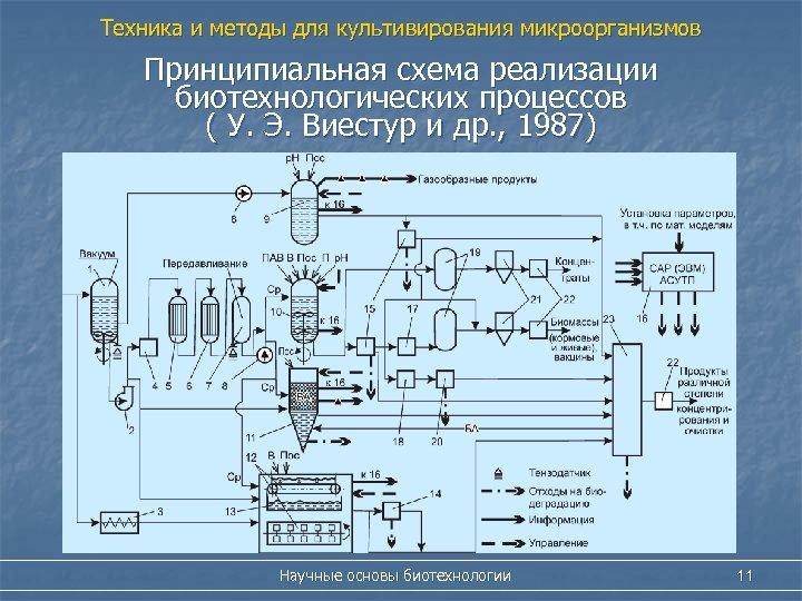 Техника и методы для культивирования микроорганизмов Принципиальная схема реализации биотехнологических процессов ( У. Э.