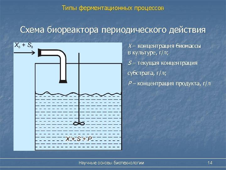 Типы ферментационных процессов Схема биореактора периодического действия Х – концентрация биомассы в культуре, г/л;