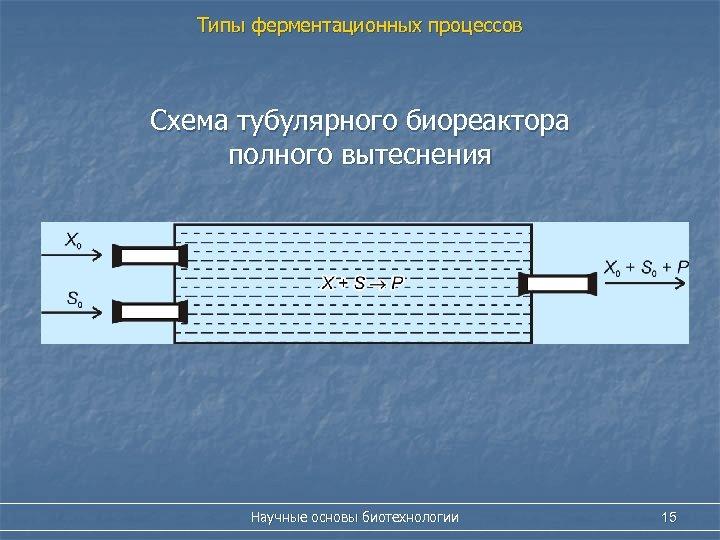 Типы ферментационных процессов Схема тубулярного биореактора полного вытеснения Научные основы биотехнологии 15