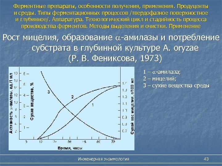 Ферментные препараты, особенности получения, применения. Продуценты и среды. Типы ферментационных процессов /твердофазное поверхностное и