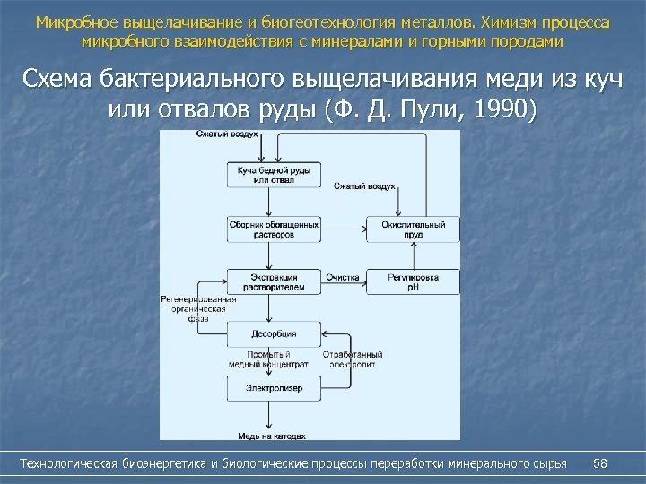 Микробное выщелачивание и биогеотехнология металлов. Химизм процесса микробного взаимодействия с минералами и горными породами