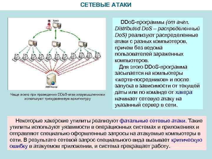 СЕТЕВЫЕ АТАКИ Чаще всего при проведении DDo. S-атак злоумышленники используют трехуровневую архитектуру DDo. S-программы
