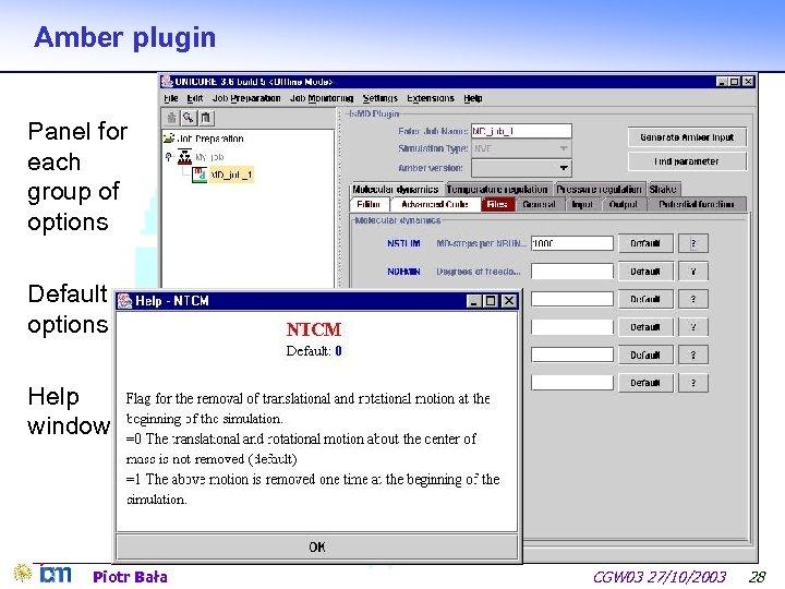 Amber plugin Panel for each group of options Default options Help window Piotr Bała