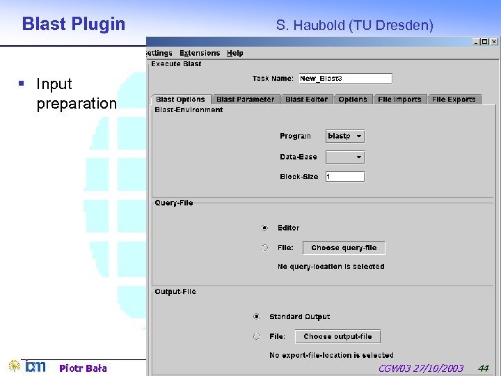 Blast Plugin S. Haubold (TU Dresden) § Input preparation Piotr Bała CGW 03 27/10/2003