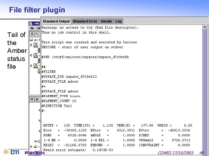 File filter plugin Tail of the Amber status file Piotr Bała CGW 03 27/10/2003