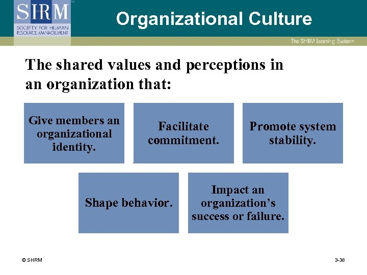 Organizational Culture The shared values and perceptions in an organization that: Give members an