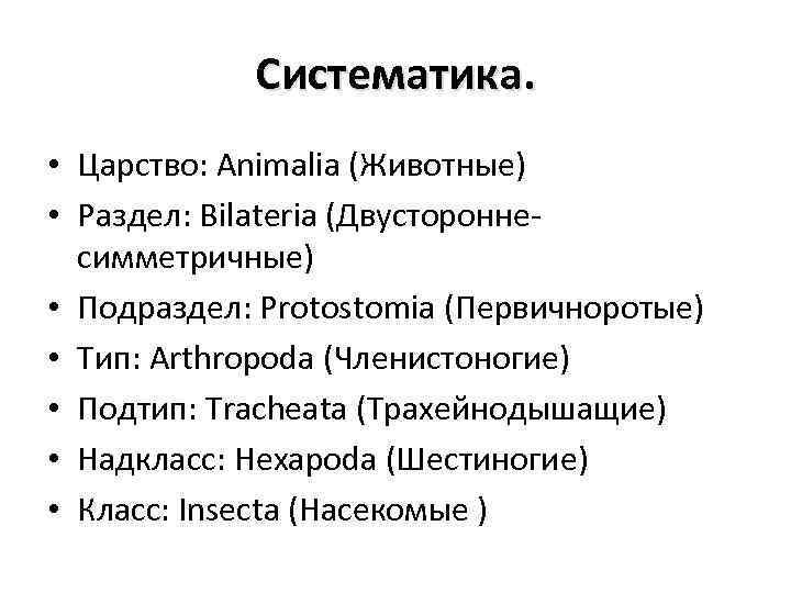 Систематика. • Царство: Animalia (Животные) • Раздел: Bilateria (Двустороннесимметричные) • Подраздел: Protostomia (Первичноротые) •
