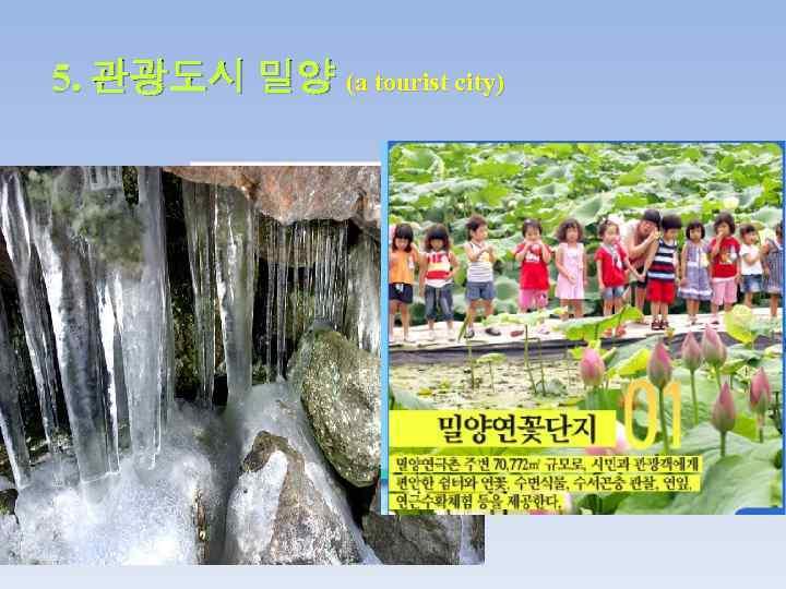 5. 관광도시 밀양 (a tourist city)