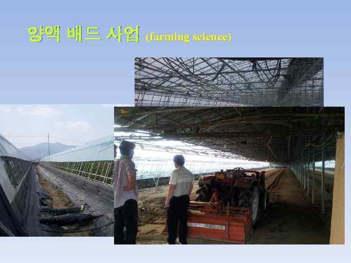 양액 배드 사업 (farming science)