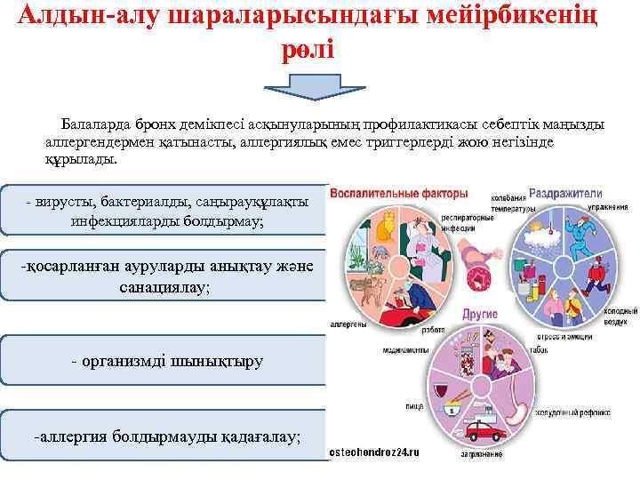 Алдын-алу шараларысындағы мейірбикенің рөлі Балаларда бронх демікпесі асқынуларының профилактикасы себептік маңызды аллергендермен қатынасты, аллергиялық