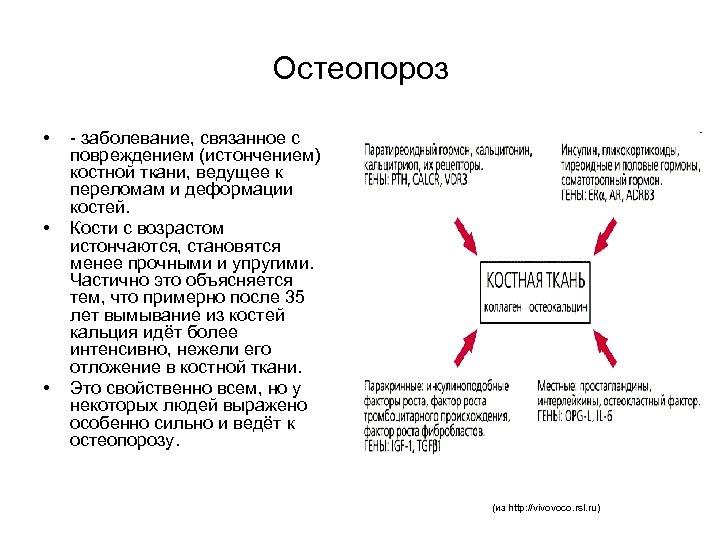 Остеопороз • • • - заболевание, связанное с повреждением (истончением) костной ткани, ведущее к