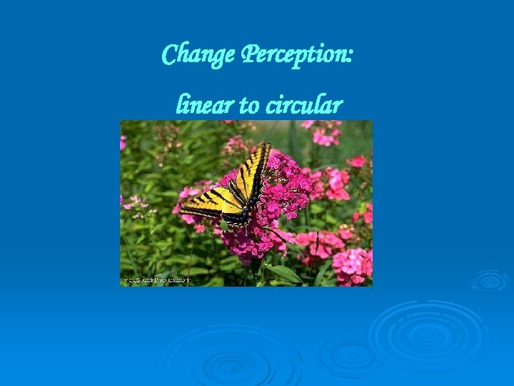 Change Perception: linear to circular