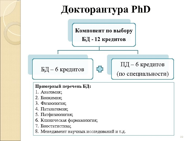 Докторантура Ph. D Компонент по выбору БД - 12 кредитов БД – 6 кредитов