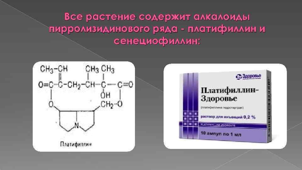 Все растение содержит алкалоиды пирролизидинового ряда - платифиллин и сенециофиллин: