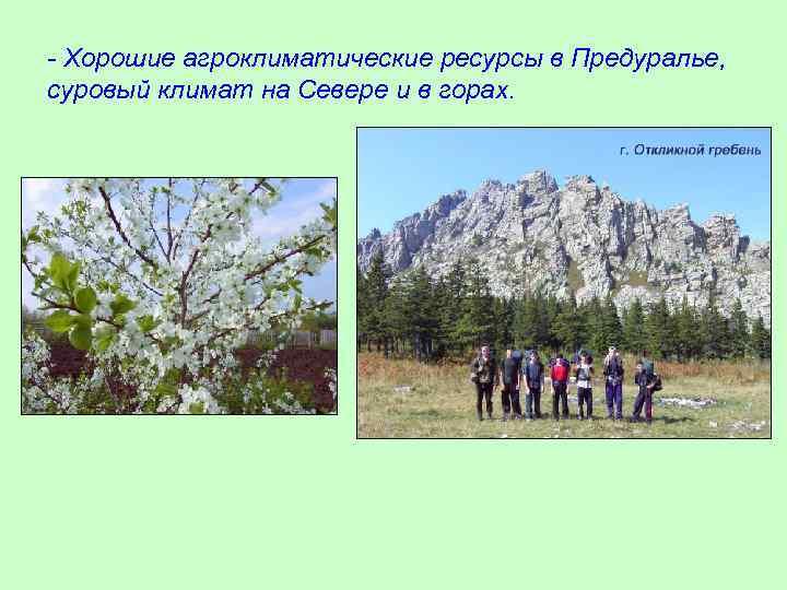 - Хорошие агроклиматические ресурсы в Предуралье, суровый климат на Севере и в горах.