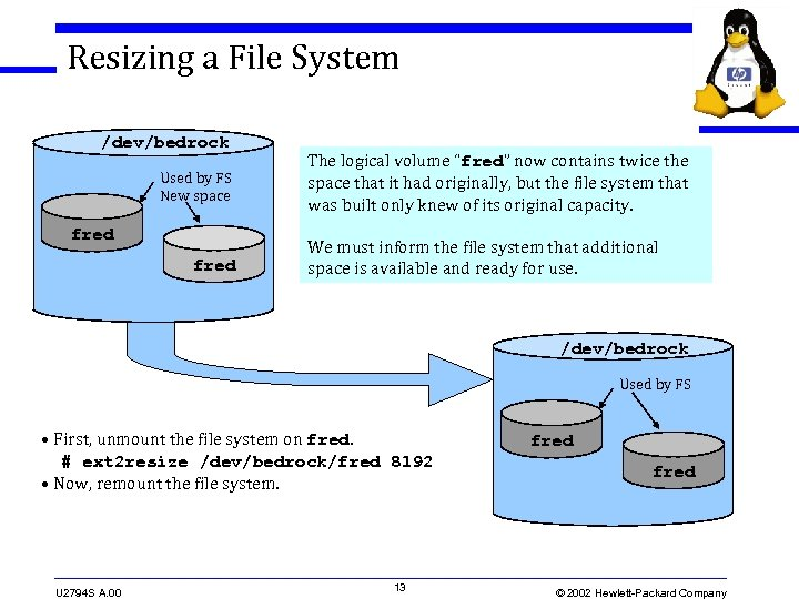 Resizing a File System /dev/bedrock Used by FS New space fred The logical volume