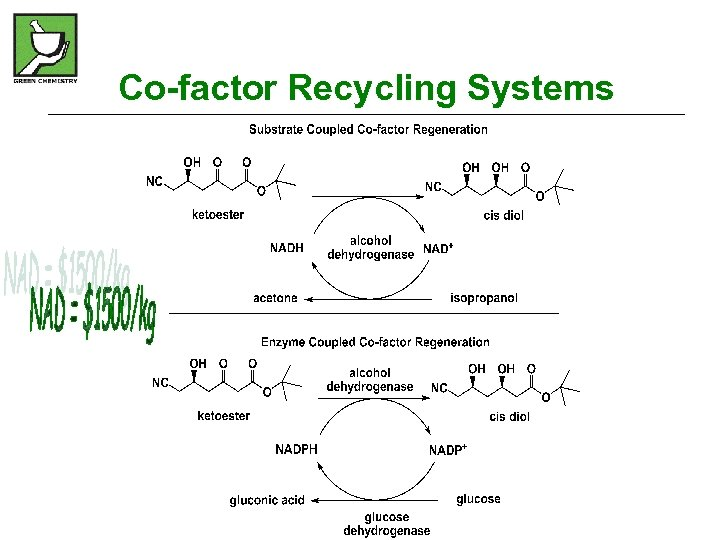 Co-factor Recycling Systems
