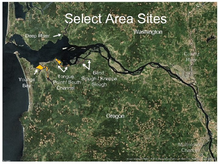 Select Area Sites Washington Deep River Cowlitz River Youngs Bay Blind Tongue Slough /