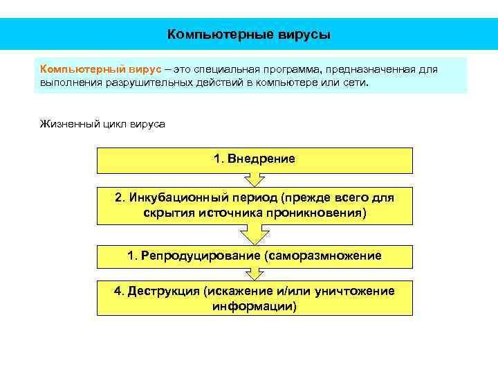 Компьютерные вирусы Компьютерный вирус – это специальная программа, предназначенная для выполнения разрушительных действий в
