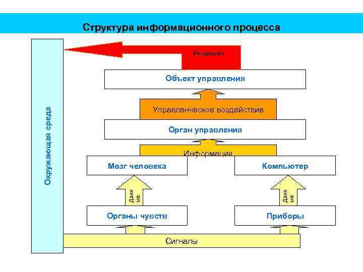 Структура информационного процесса Результат Управленческое воздействие Орган управления Информация Компьютер Данн ые Мозг человека