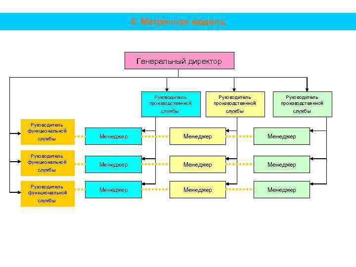 6. Матричная модель Генеральный директор Руководитель производственной службы Руководитель функциональной службы Руководитель производственной службы