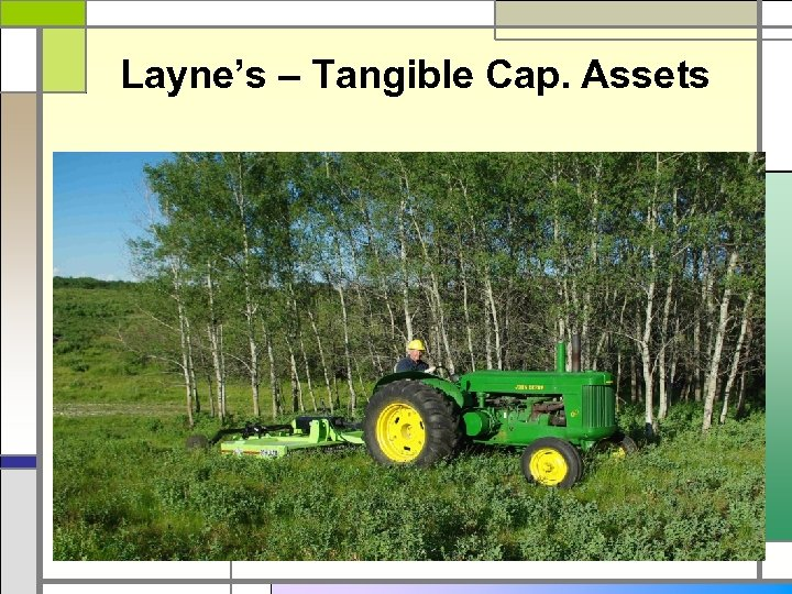 Layne's – Tangible Cap. Assets