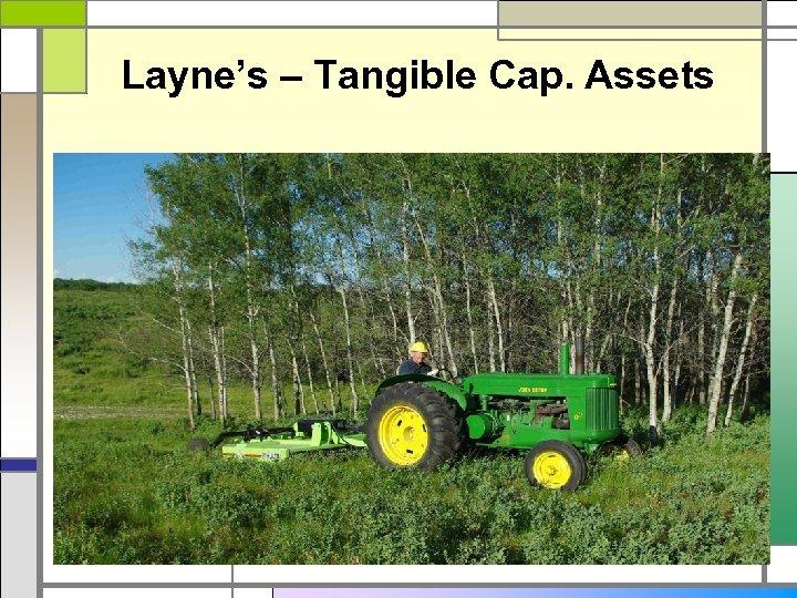 Layne's – Tangible Cap. Assets